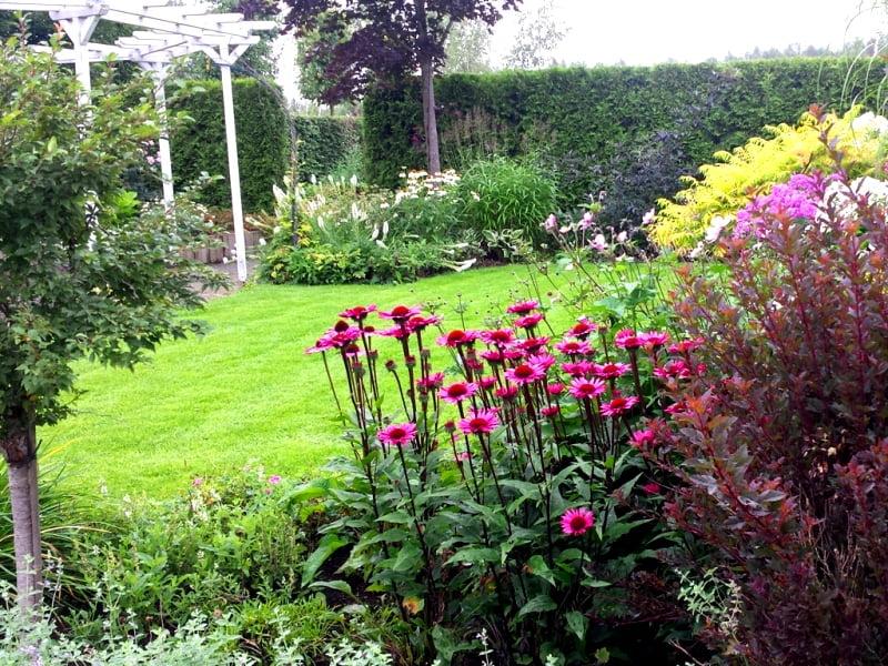 Nedideliame sklype norisi, kad veja būtų graži, daržas estetiškas, gėlynas su mažai priežiūros, visiems pakaktų saulės ir gaivaus pavėsio. Nuotr. L.Liubertaitė