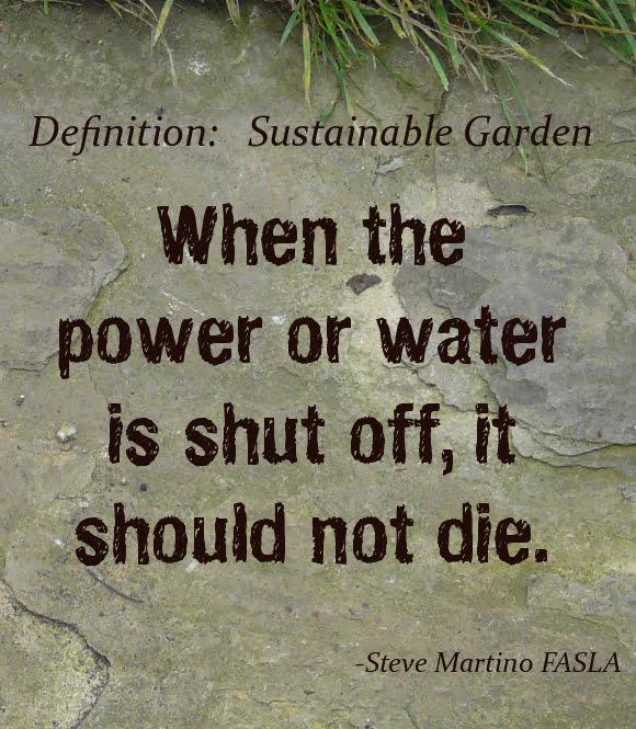 Tvari aplinka: jei vanduo išjungiamas, sodas nemiršta
