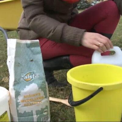 Kaip pasiruošti ir balinti obelis (video)