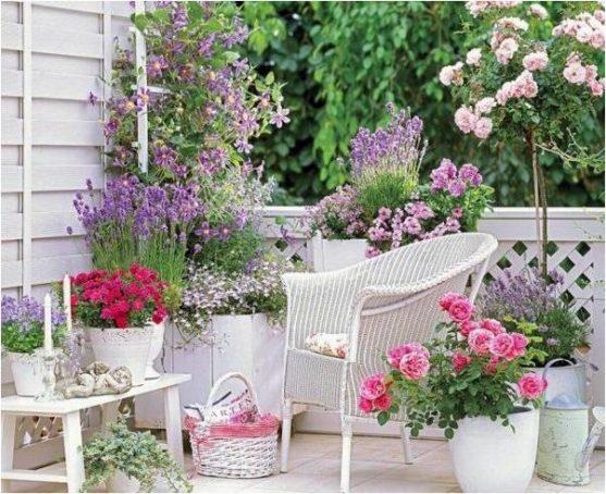 Gėlių kompozicijos vazonuose
