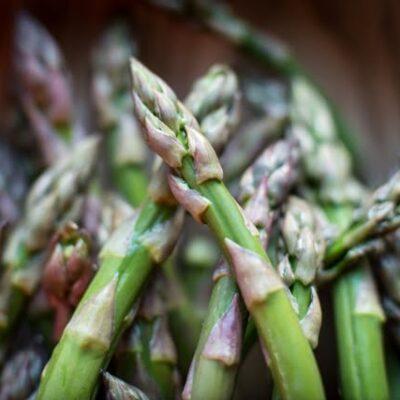 Smidrai (šparagai) – auginimas Lietuvoje