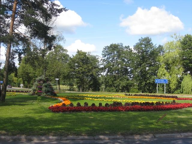 Vienmetės gėlės Trakų žiedo viduryje. Atkreipkite dėmesį ir į statinį kairėje pusėje.