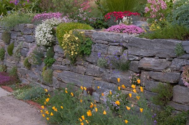 Dekoratyviniai akmenys parenkami vienos kilmės, bet skirtingų dydžių. Išnaudokite plyšius tarp akmenų. Nuotrauka iš dvcnargs.org