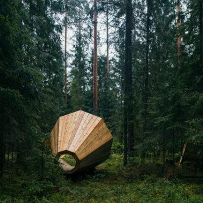 Birgit Boigus: milžiniški megafonai – klausytis miško garsų