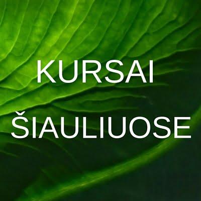 KursaiSIAULIUOSE