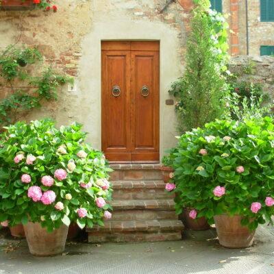 Įėjimas į namą