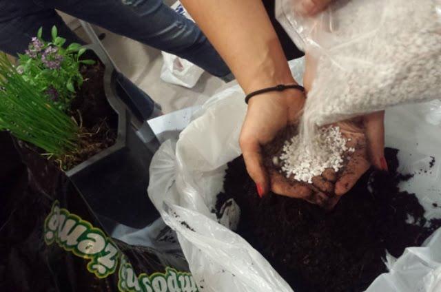 Šįkart naudojote agroperlitą, tačiau galima ir kitokias medžiagas, kurios ilgiau išlaiko drėgmę ir atiduoda ją augalams tada, kai reikia.