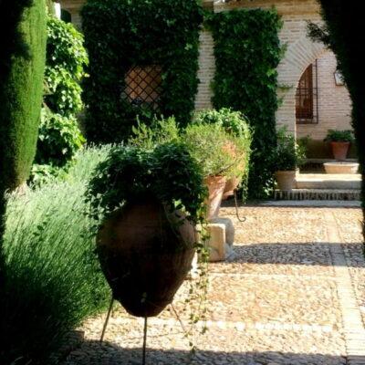 James McGrath: kodėl Viduržemio sodai turi kvepėti