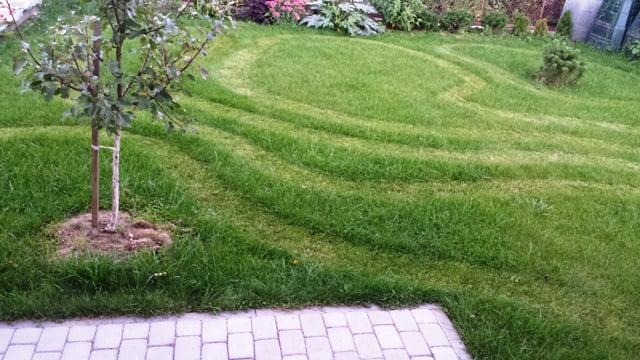 Labirintas vejoje