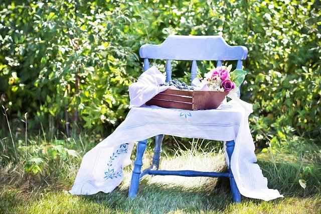 blueberries-870513_640