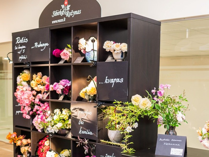 """""""Sibirkos rožynas"""" konferencijoje """"Garden Style"""" pristatė visą puokštę pojūčių. Nuotr. aut. J.Andužis"""