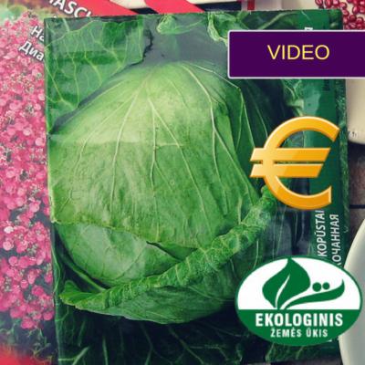 Ekologiškos sėklos: ar verta už jas mokėti daugiau