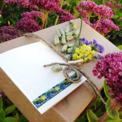 Dovana mamai – augalų mylėtojai (ką radau įdomaus)