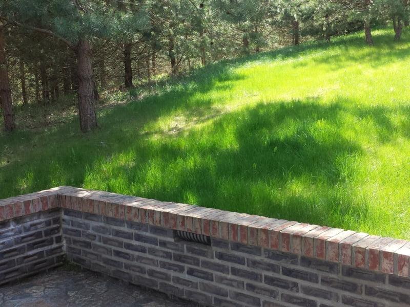 Tradiciniu būdu įrengta nauja veja sodyboje. Nuotr.L.Liubertaitė