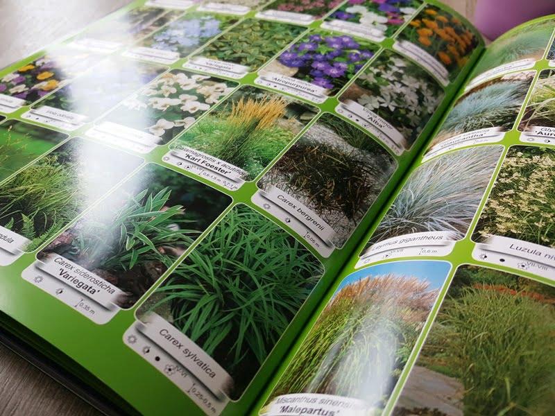 Dekoratyvinių augalų katalogas
