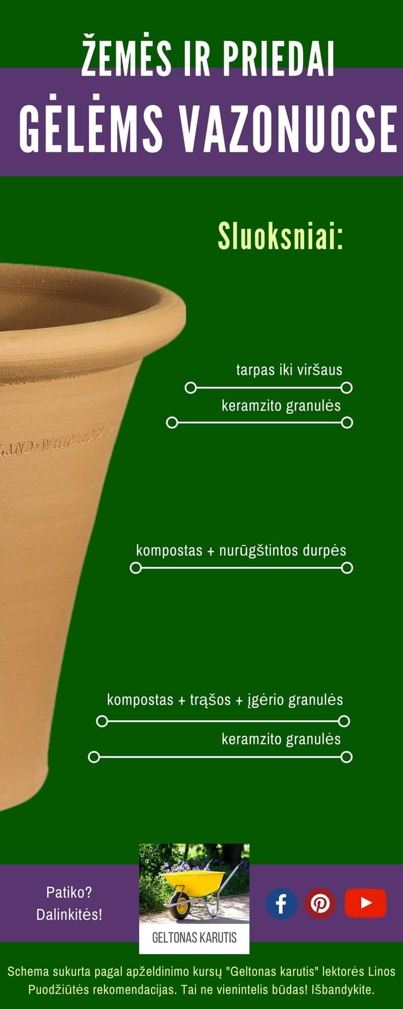 Gėlių sodinimas į lovelį, infografikas. Aut. L.Liubertaitė