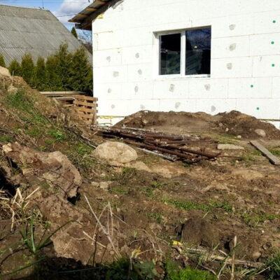 Augalų sodinimas statybų metu: apdairu ar skubota?