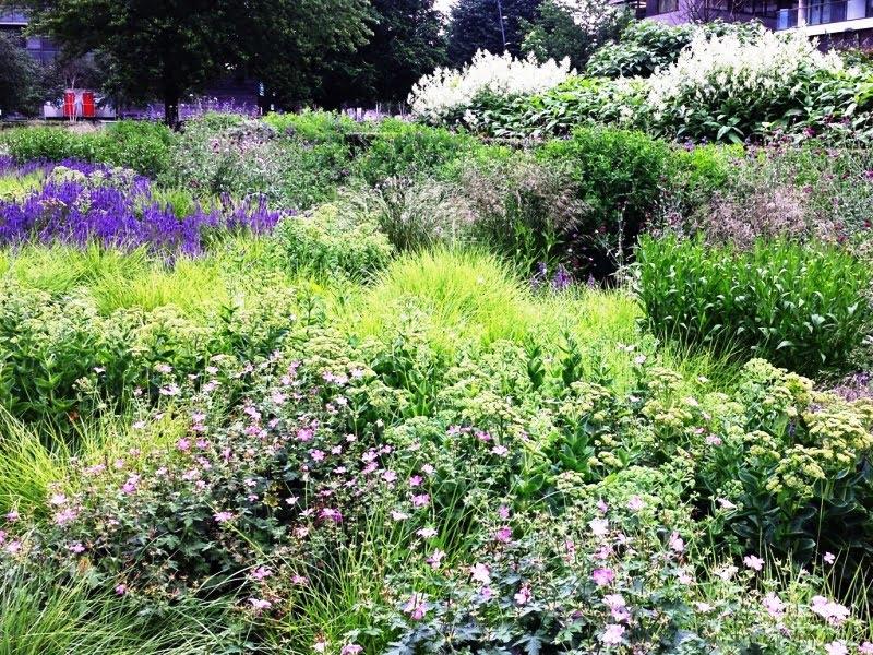 Natūralistinis apželdinimas – dažniausiai augalai sodinami maišant juos tarpusavyje, visai kaip įprasta matyti gamtoje.