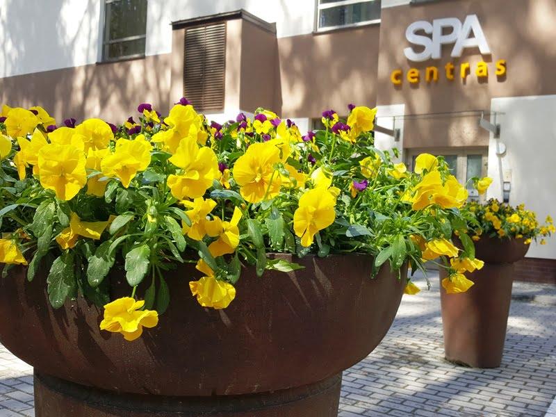Ryšku, bet harmoninga: pastatas, iškaba, vazonai, gėlės. Birštonas. Nuotr. L. Liubertaitė.