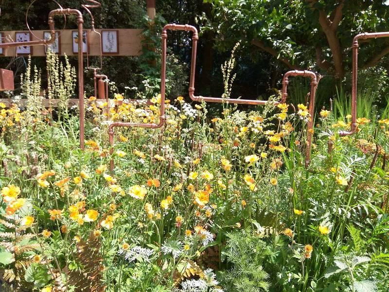 Catherine MacDonald sodą reprezentuoja variniai distiliavimo vamzdeliai