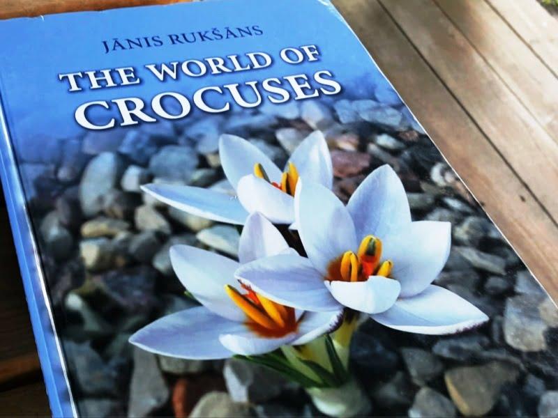 """Janio Rukšanio knyga apie krokus """"The World of Crocuses"""". Kaip atskleidė pats selekcininkas, tai mylimiausias jo augalas."""