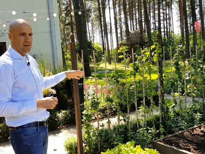 Vertikalūs elementai kieme padeda sukurti jaukią aplinką. Ansis Birznieks rodo vieną iš pavyzdžių – uogų gyvatvorė. Ansis palei šią sienelę pasodinęs formuojamus serbentus, tačiau galima rinktis ir kitus augalus.