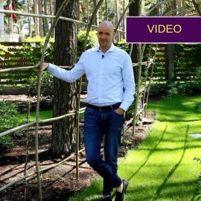 Vertikalūs elementai: greitas būdas sukurti jaukias erdves kieme