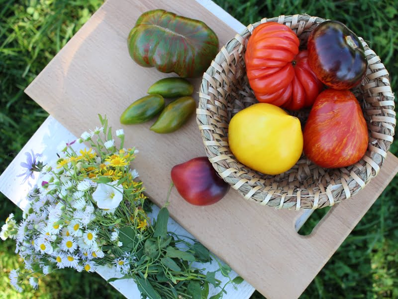 """Kursai """"Modernus sodas ir daržas"""" sukurti tam, kad pradedantiesiems palengvintų pradžią ir supažindintų su natūraliais sodininkystės būdais. Nuotr. aut. L.Liubertaitė"""