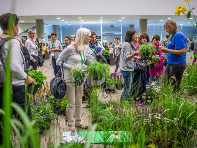 Parodoje buvo galima nusipirkti ir augalų, kurie sulaukė itin didelio dalyvių susidomėjimo.
