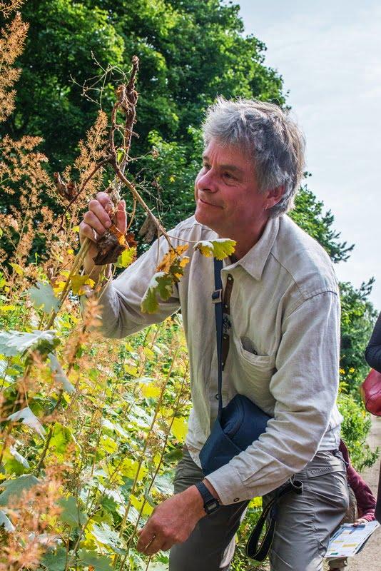 Noel Kingsbury VU botanikos sode, kur dalyviai turėjo galimybę dalyvauti jo vedamuose praktiniuose mokymiuose.