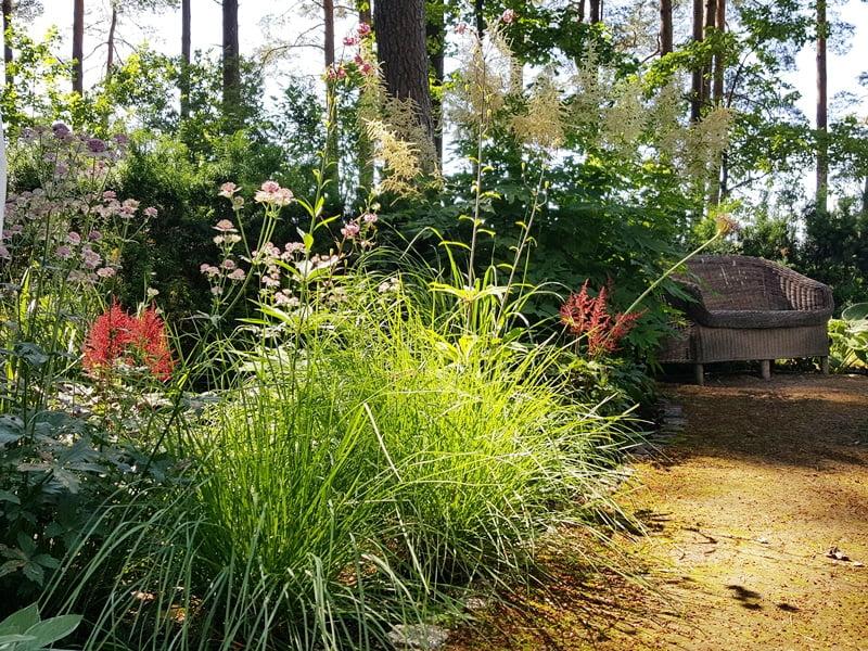 Kambarys sau ir visame sklype pasikartojantys augalai. Nuotraukoje išsiskiria gražiosios astilbės ir dekoratyviniai česnakai.