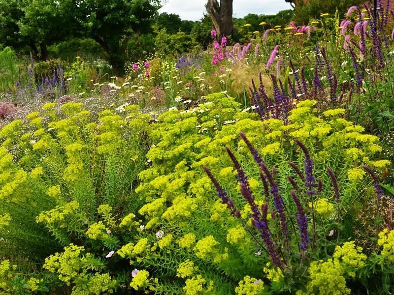 Gėlynus viešosiose erdvėse reikia kurti įvedant daugiau spalvų, negu būtų natūralioje gamtoje. Nuotr. aut. Peter Korn.