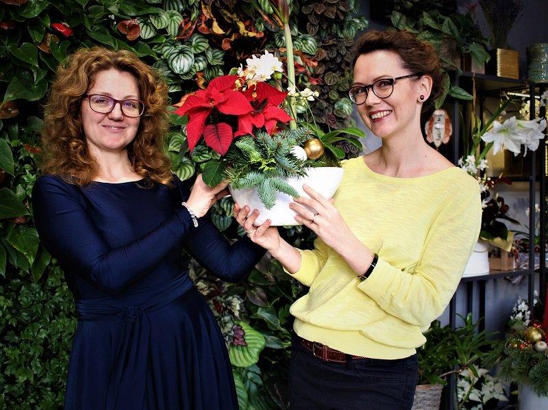 Kambariniai augalai susijungia gražioje kompozicijoje - gaila, nuotraukoje nesimato meilenio žiedo, kuris viršuje. Nuotr. aut. L.Liubertaitė