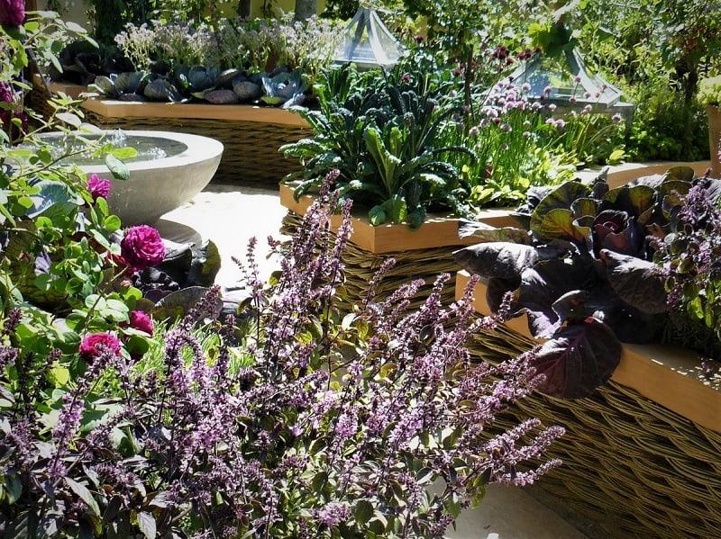 Spalvotos daržovės nepagadins net paties elegantiškiausio sodo
