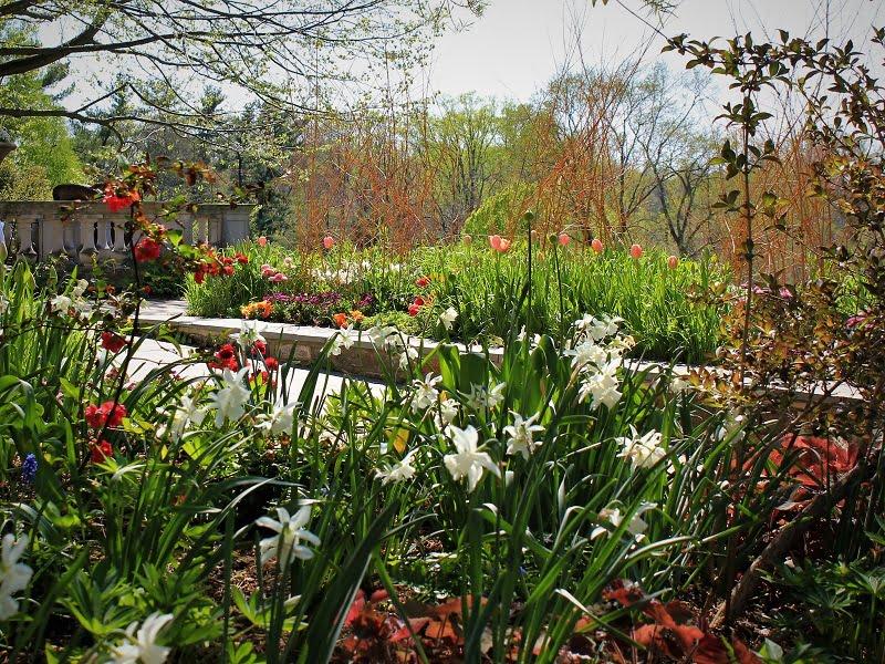 Žydėjimo šventės 2018. Pavasaris - ne tik darbai sode, bet ir malonumas lankytis žydėjimo šventėse bei kituose renginiuose. Nuotr.aut. R.Laurinavičienė