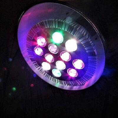 LED augalų lempos: ką rasite Lietuvoje, jei nutarsite išbandyti