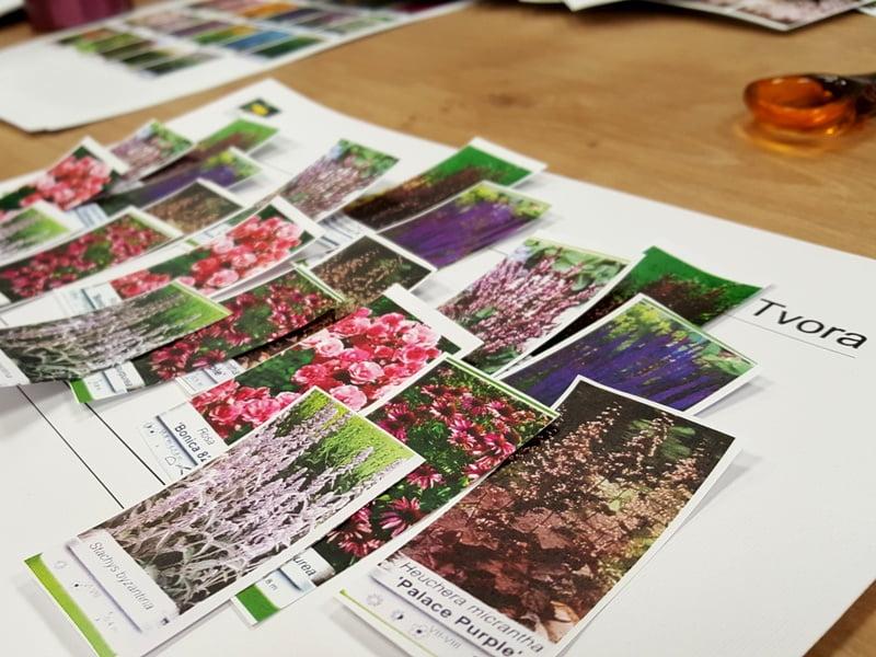 Sukursite koliažą pagal augalų dizaino principus. Nuotr. L.Liubertaitė