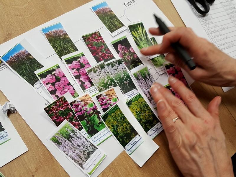 Seminaro metu dalyviai kuria derinius iš patinkančių daugiamečių augalų. Nuotr. L.Liubertaitė