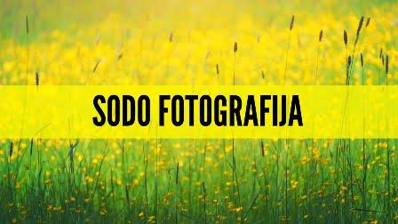 Sodo fotografija