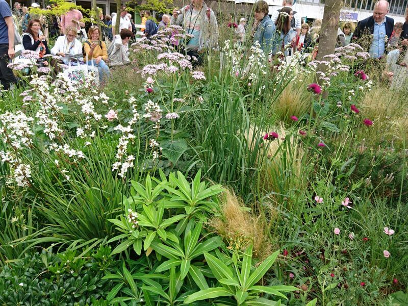 "Matt Keightley sodas ""Good Garden"". Nuotr. aut. J. Bakūnė (Čelsio gėlių paroda 2018, Londonas)"