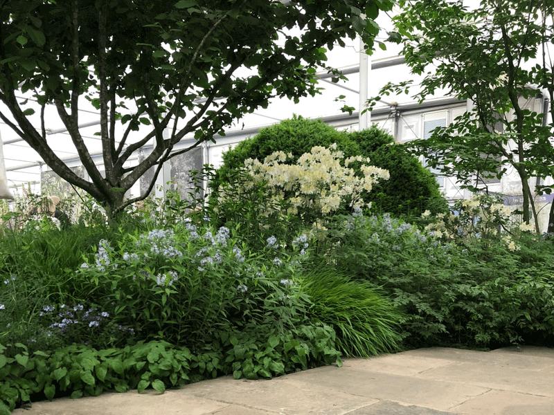 """Tom Stuart - Smith """"The Weston garden"""". Nuotr. aut. M. Sliesoraitytė (Čelsio gėlių paroda 2018, Londonas)"""