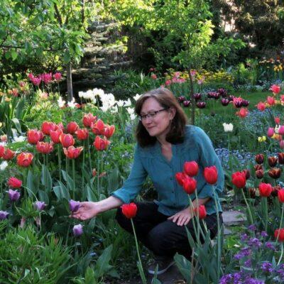 Tūkstančio tulpių auginimas privačiame sklype: nuotraukos ir patarimai
