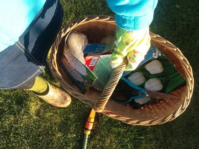 Ruduo - laikas sodinti ir svogūnines gėles. Nuotr. aut. L. Liubertaitė.