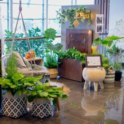 Balkono įrengimas: dizainerės pristatė praktišką ir gražų pavyzdį