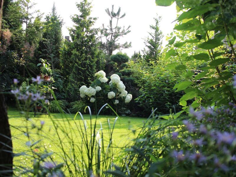 Vej turi sudaryti labai aiškų kontrastą už jos ribos esantiems augalams. Nuotr. aut. L. Liubertaitė.