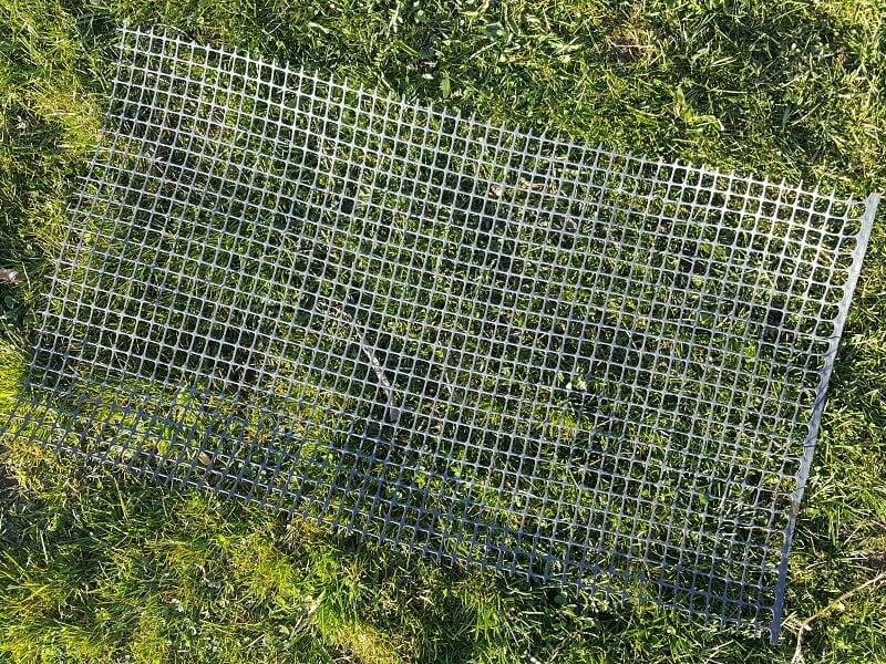 Vandens lelijos apsaugai naudojamas tinkliukas