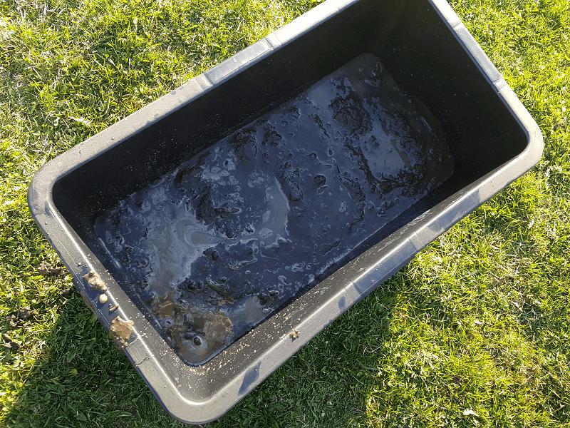 Vandens lelijos sodinimas geriausia i plastikine deze