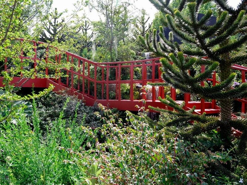 Dizainerio Jonathan Snow sodas - pietietiškas kontrastas su nematytu augalų derinimu. Nuotr. Alina Butavičiūtė