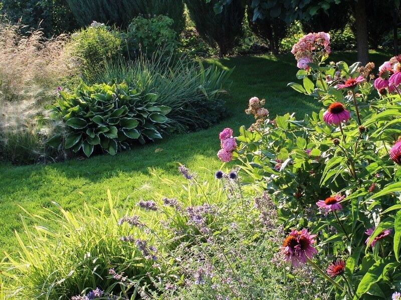 Rožynas palaipsniui buvo pildomas įvairiais augalais. Nuotr. L.Liubertaitė