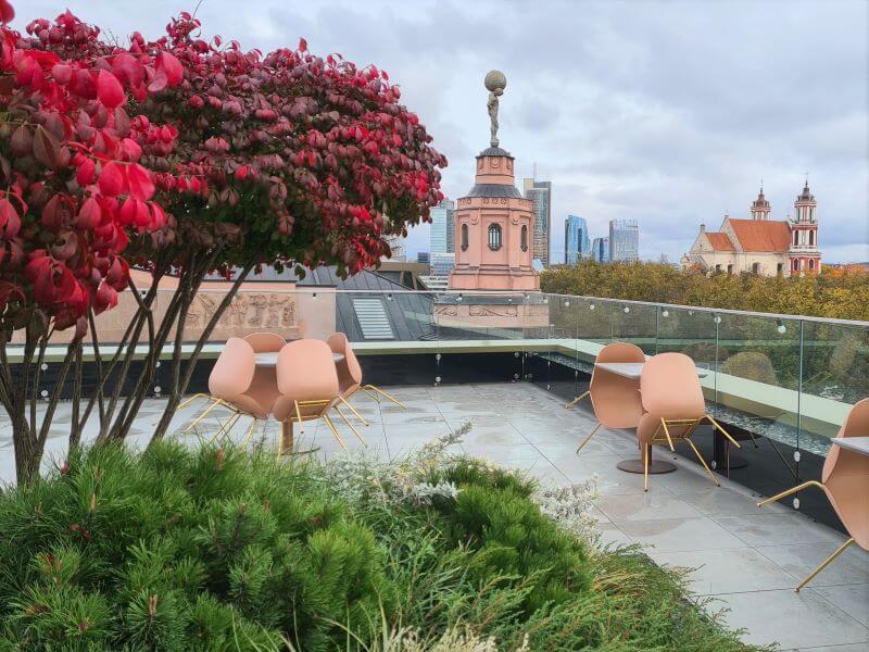 Sodas ant namo stogo. Augalai parinkti taip, kad neužgožtų nuostabios Vilniaus panoramos. Nuotr. L. Liubertaitė